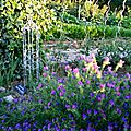 Windows-Live-Writer/Jardin_10232/DSCN0749