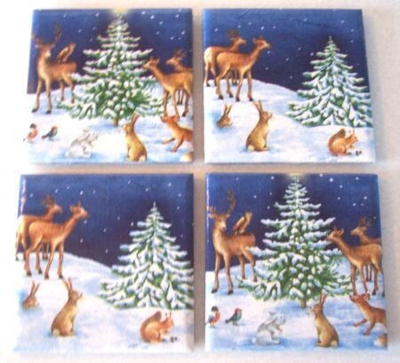 Enchanted forest coasters