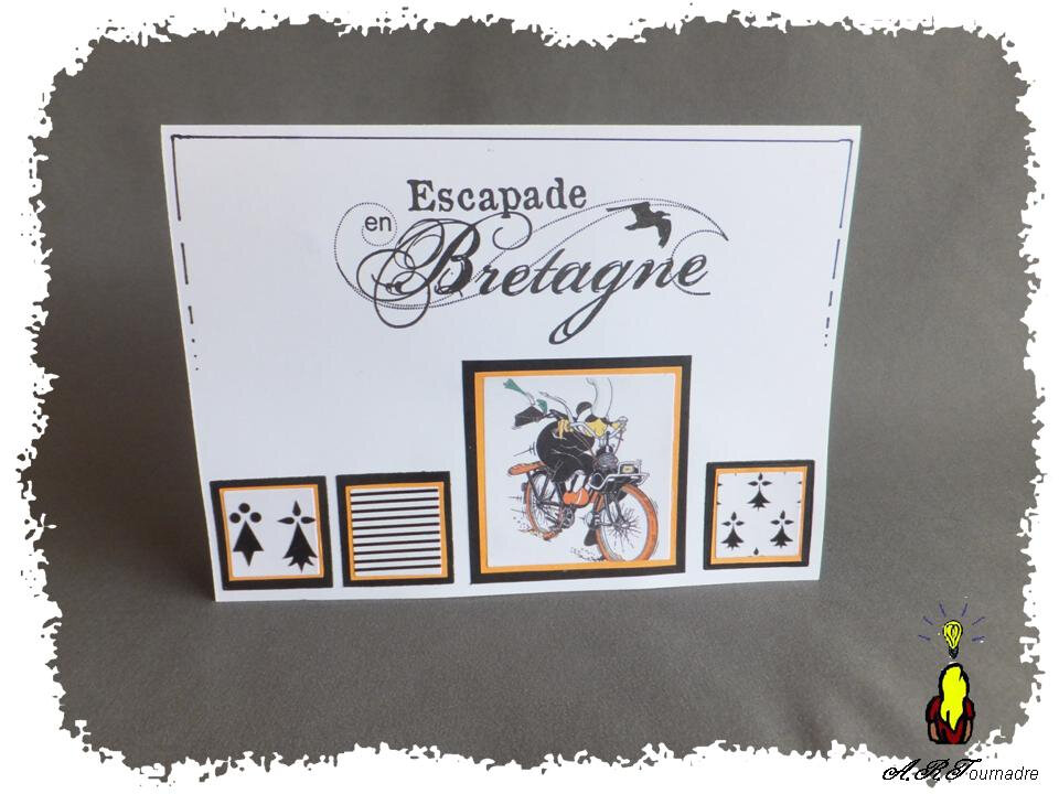 ART 2014 08 carte bretonne 1