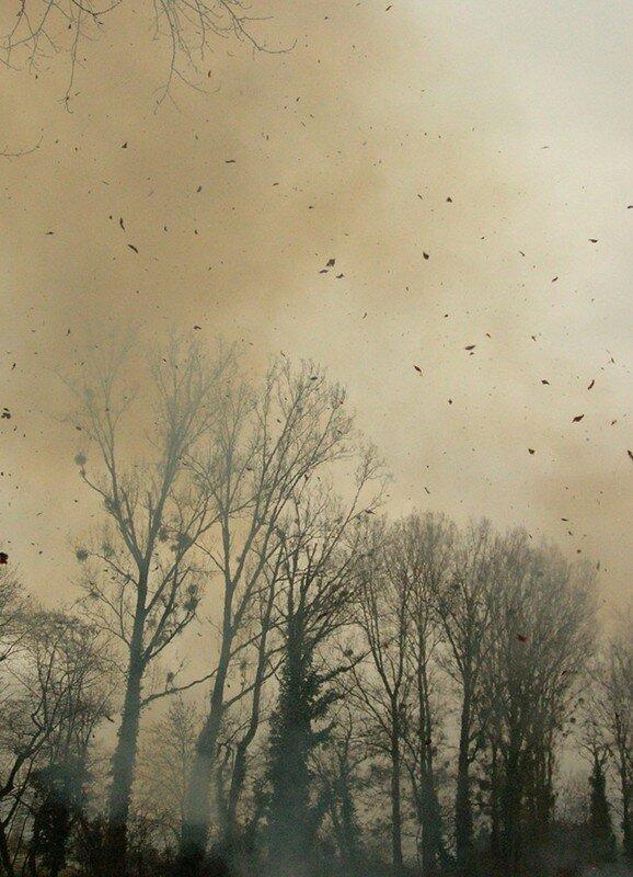 Derrière un rideau de fumée (hiver 2008)