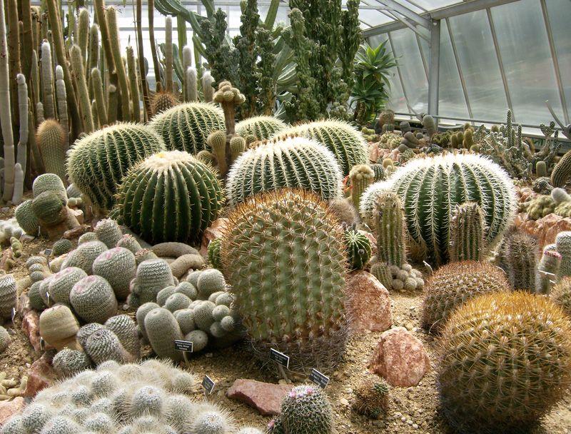 Jardin botanique Porrentruy