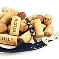Découverte vins du chili
