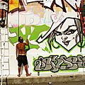Wall Espece Urbaines / Lyon