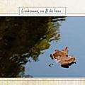 Aubigny, un signe que l'automne est arrivé