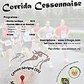 Corrida cessonnaise - 14 décembre 2014