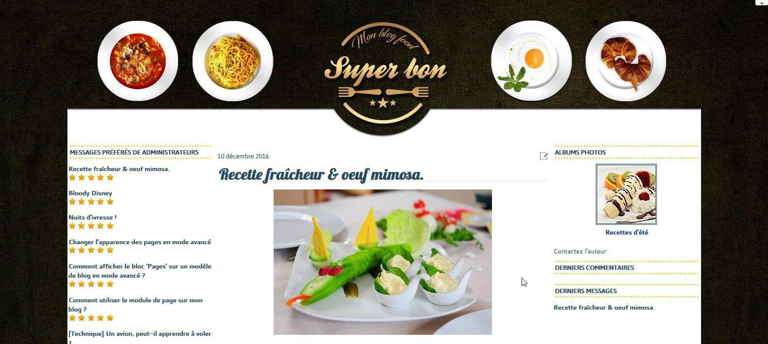Modéle 02 disponible - Convient à un blog culinaire.