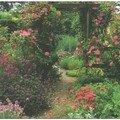 Garden-076