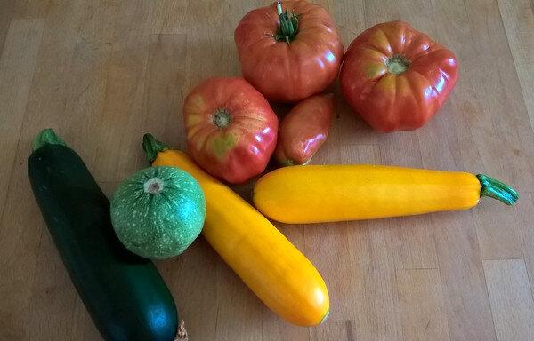 20180811 légumes du potager