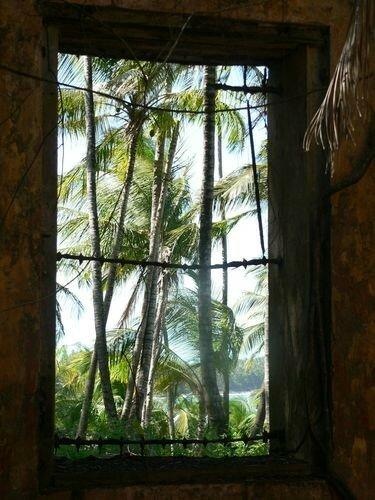 Saint Joseph, il n'y avait pas de palmiers à l'époque du bagne
