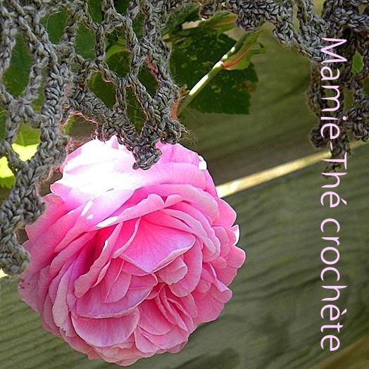 Rose et crochet au jardin...