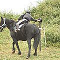 équitation de pleine nature - rallye équestre (76)