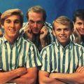 BEACH BOYS ( les fréres Wilson )