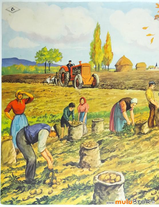 Affiche-Rossignol-TRAVAUX-AUTOMNE-3-muluBrok-Vintage
