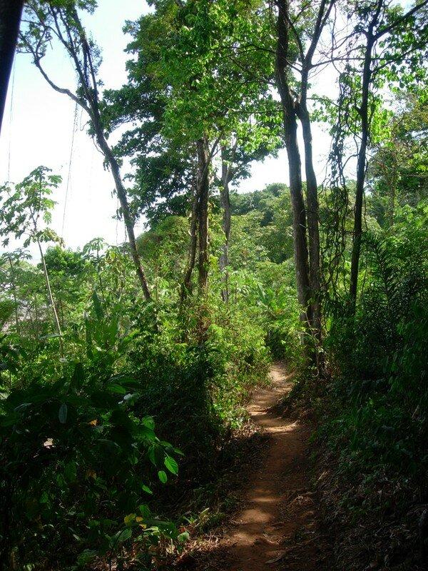 Colline de Montabo
