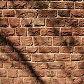 Le murmure des murs
