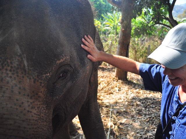 Thailand 539