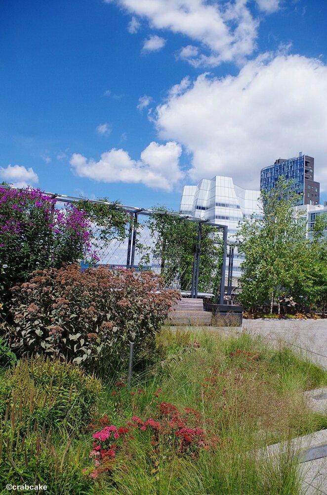 High Line New York 8