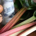 La rhubarbe... celle qui garde la rhubarbe