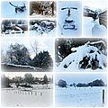 Photos neige