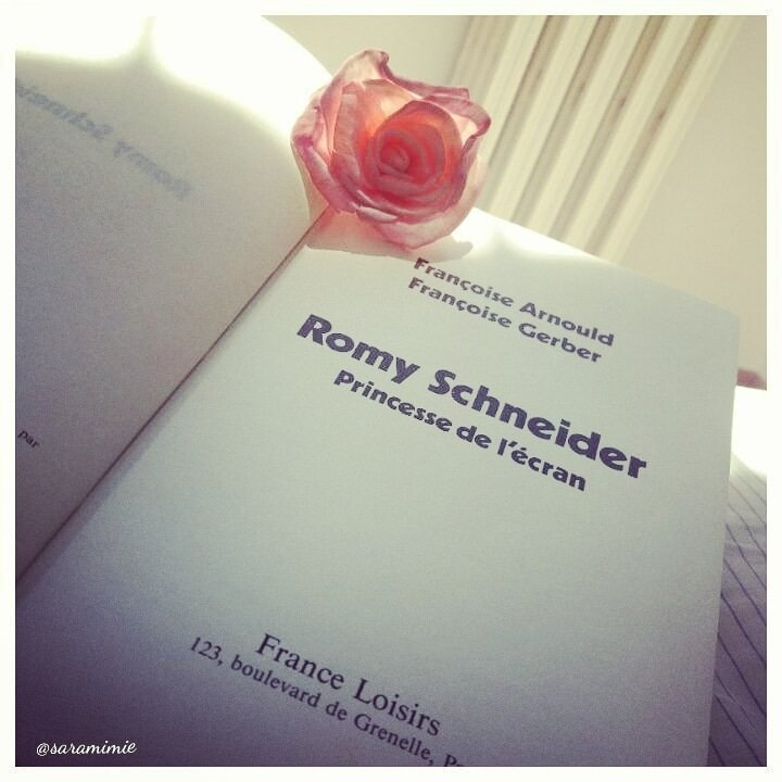 Romy Schneider - princesse de l'écran de Françoise Arnould et Françoise Gerber