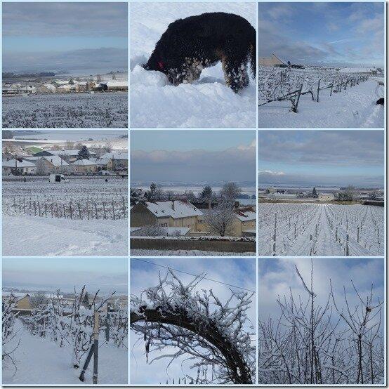 neige le 31 janvier 20192