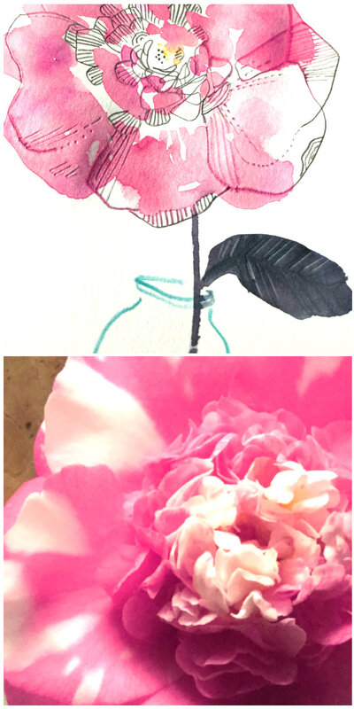 collagecamelia