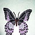 De plus gros papillons