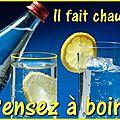 Cocktails avec ou sans alcool, jus de fruits, smoothies... ( récapitulatif )