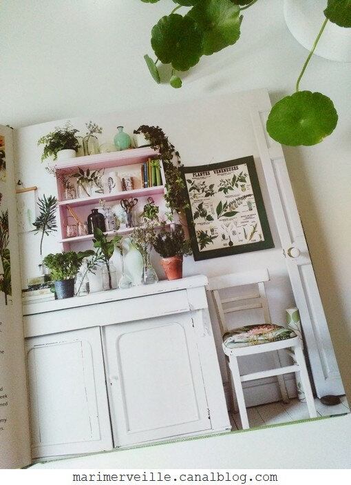 Botanical style - selina Lake - blog marimerveille 2