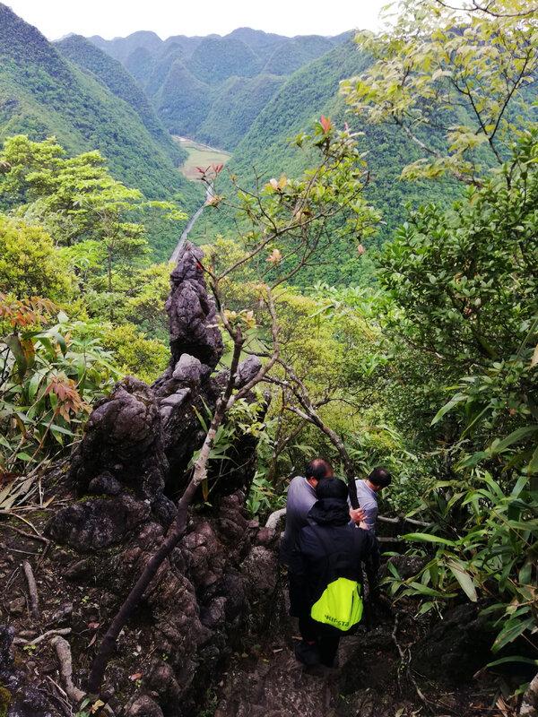 Réserve de Maolan_Guizhou_Chine2018_XRu_5