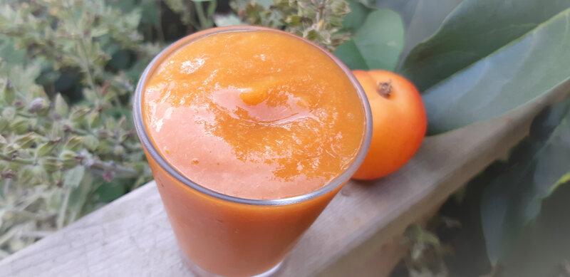compote vapeur pommes abricots 0