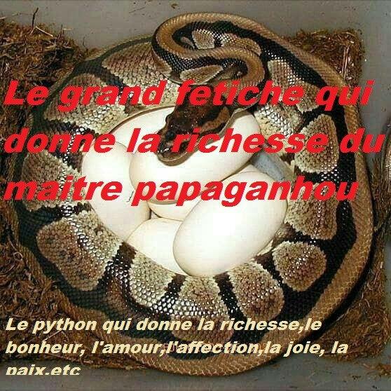 Le python qui donne la richesse tres puissant du maitre papaganhou