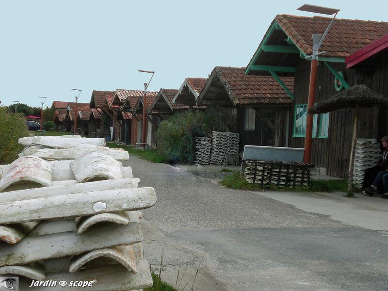 Cabanes des ostreiculteurs