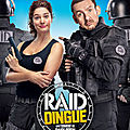 Raid dingue de dany boon