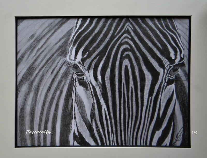 140 le z bre des dessins au gr de mes envies pascale lbv - Dessin zebre facile ...