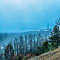 parc de l'ermitage brouillard2