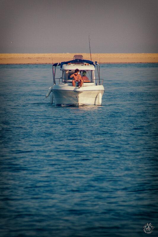 bateau banc d'arguin 2