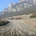 Ici, c'est la capitale des vignobles de savoie