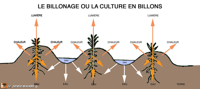 Le-Billonage