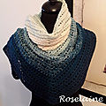 Roselaine tricot écharpe scarf 1