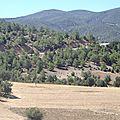 turquie : plaine anatolienne
