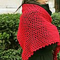 Giant shawl amaryllis