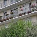 jardins fleuris 0280029