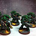 Salamanders10