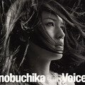 Eri nobuchika - voice (single)