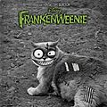 Celle qui avait frankenweeniser son chat ...