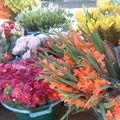 marché de St Paul (10)
