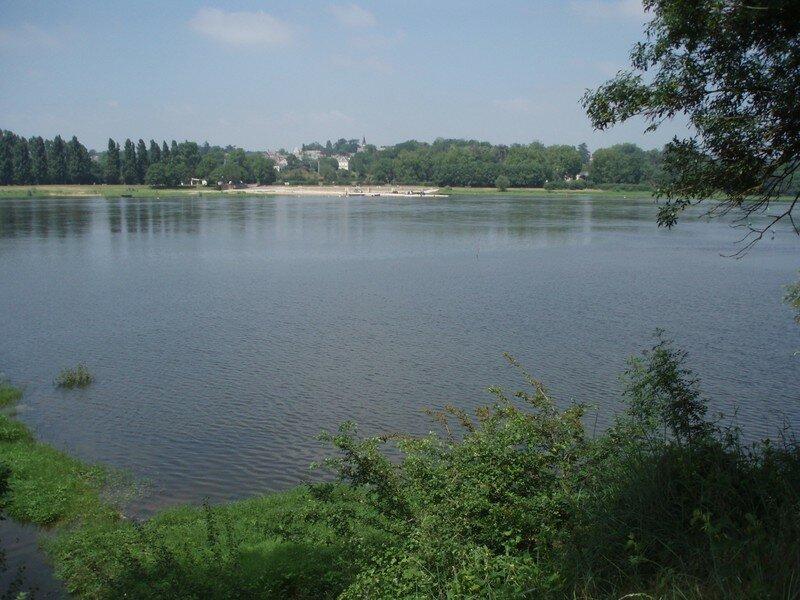 Un bras de Loire