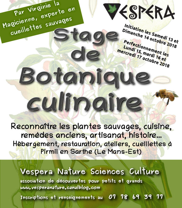 affiche stage bota culinaire oct18