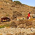 Rencontre à Gioura — P1010567